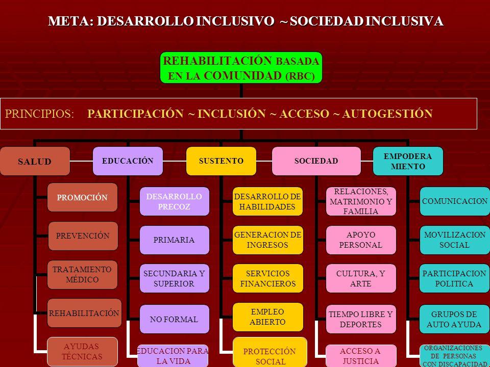 META: DESARROLLO INCLUSIVO ~ SOCIEDAD INCLUSIVA