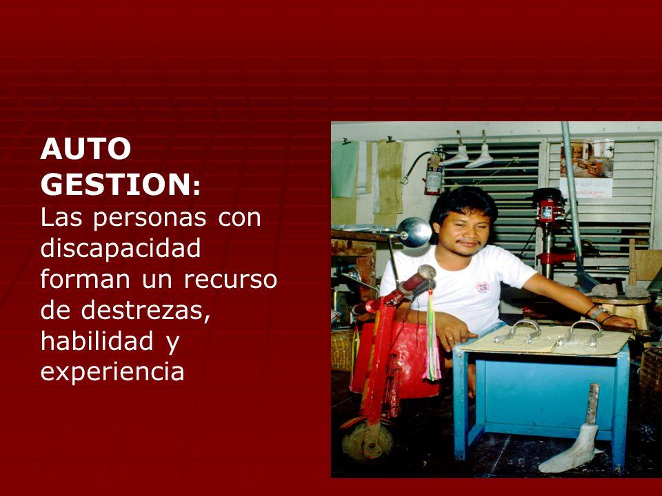 AUTO GESTION: Las personas con discapacidad forman un recurso de destrezas, habilidad y experiencia