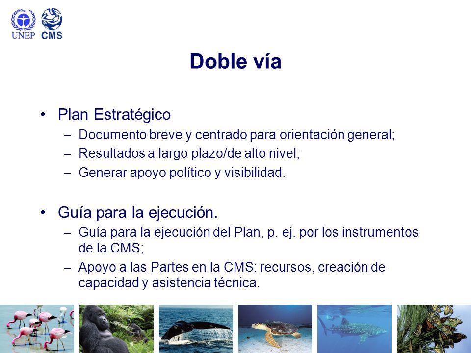 Doble vía Plan Estratégico Guía para la ejecución.