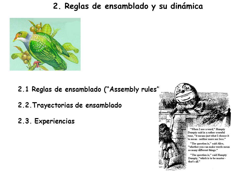 2. Reglas de ensamblado y su dinámica