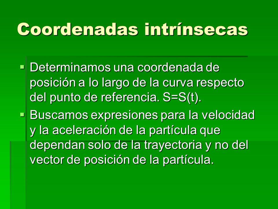 Coordenadas intrínsecas