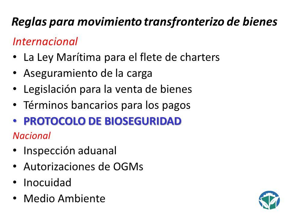 Reglas para movimiento transfronterizo de bienes