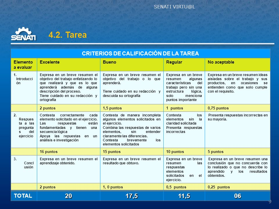 CRITERIOS DE CALIFICACIÓN DE LA TAREA