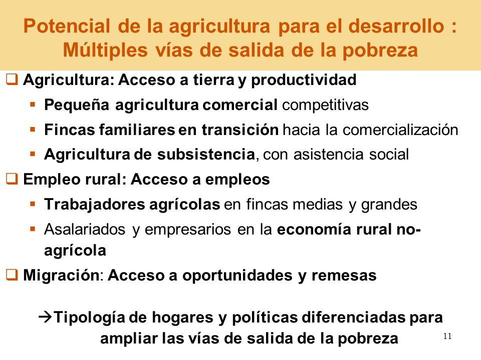 Potencial de la agricultura para el desarrollo : Múltiples vías de salida de la pobreza