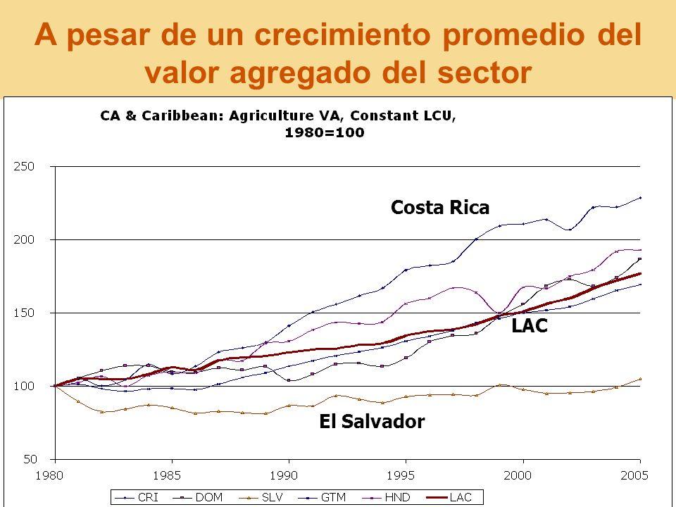 A pesar de un crecimiento promedio del valor agregado del sector