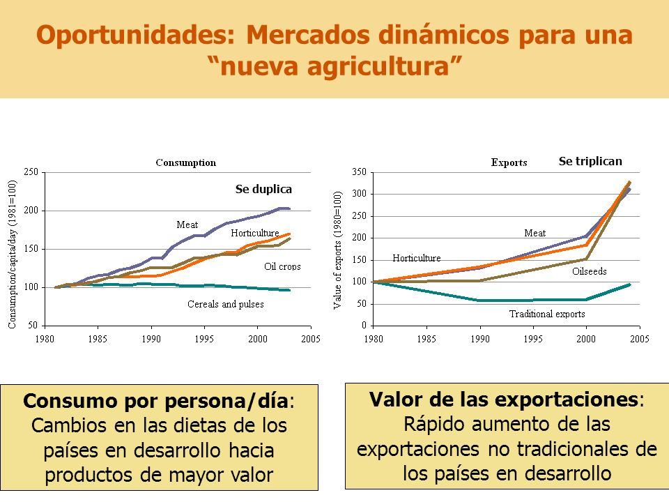 Oportunidades: Mercados dinámicos para una nueva agricultura