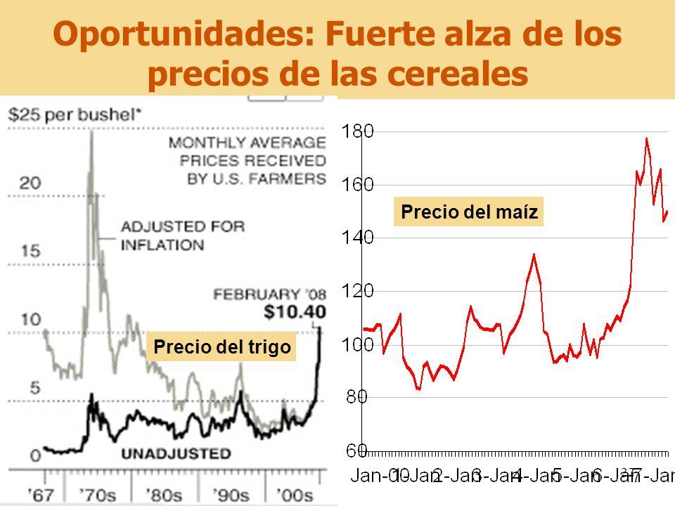 Oportunidades: Fuerte alza de los precios de las cereales