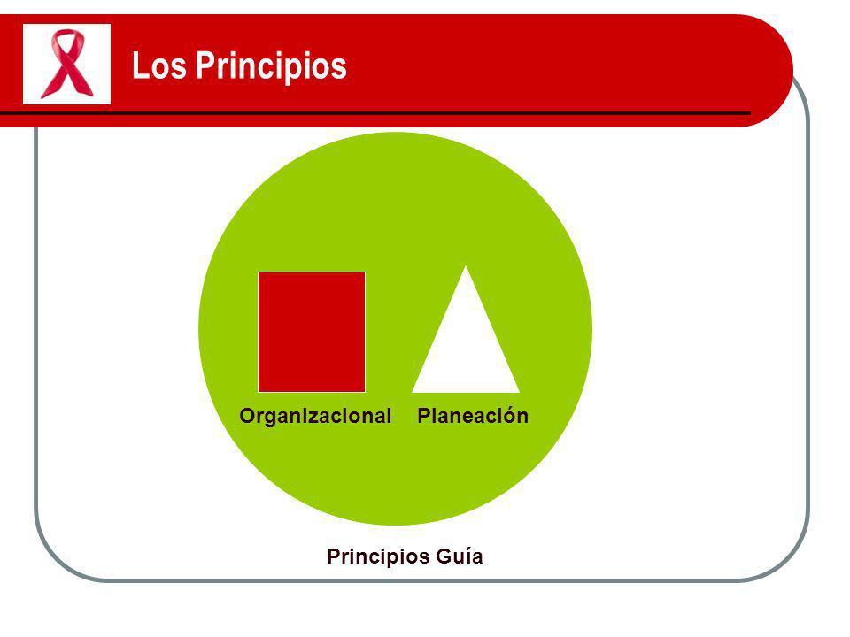 Los Principios Organizacional Planeación Principios Guía