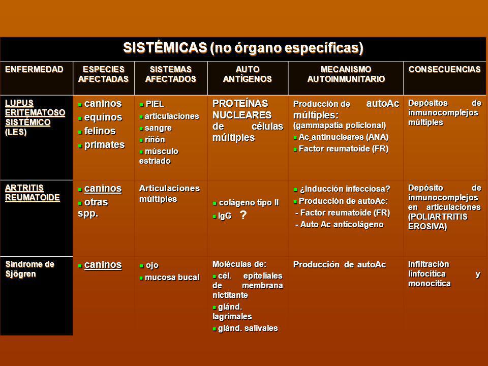 SISTÉMICAS (no órgano específicas) MECANISMO AUTOINMUNITARIO
