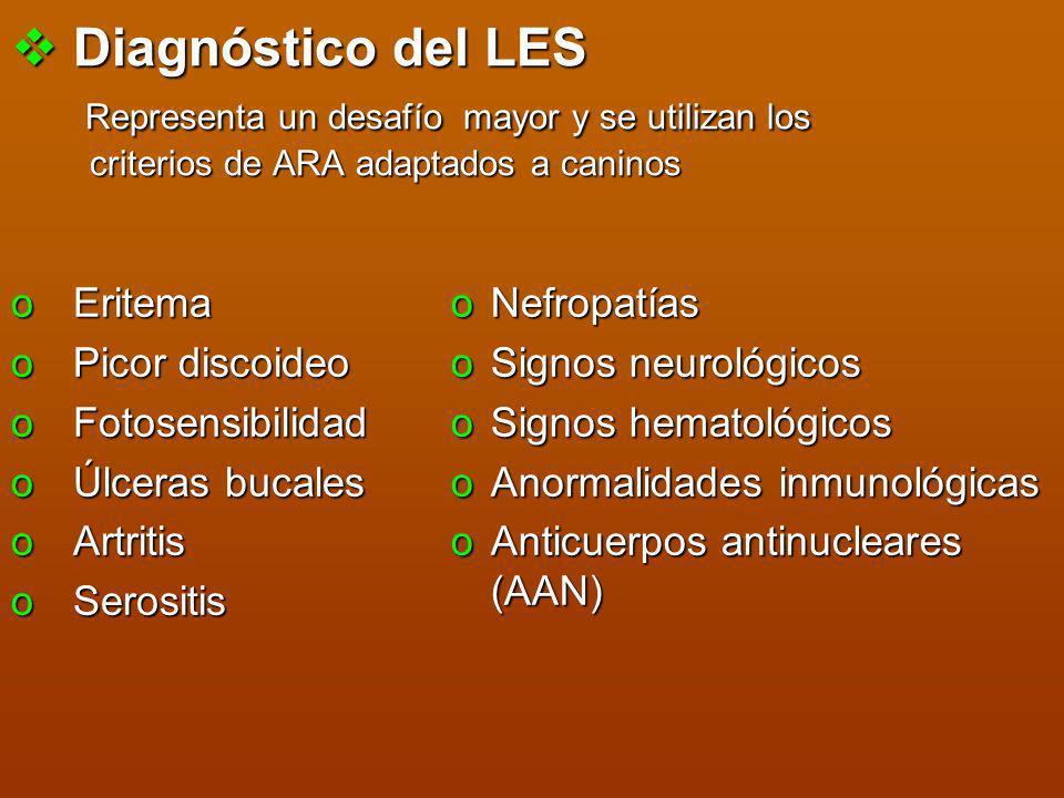Diagnóstico del LES Representa un desafío mayor y se utilizan los criterios de ARA adaptados a caninos