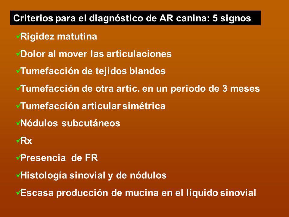 Criterios para el diagnóstico de AR canina: 5 signos