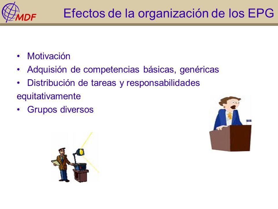 Efectos de la organización de los EPG