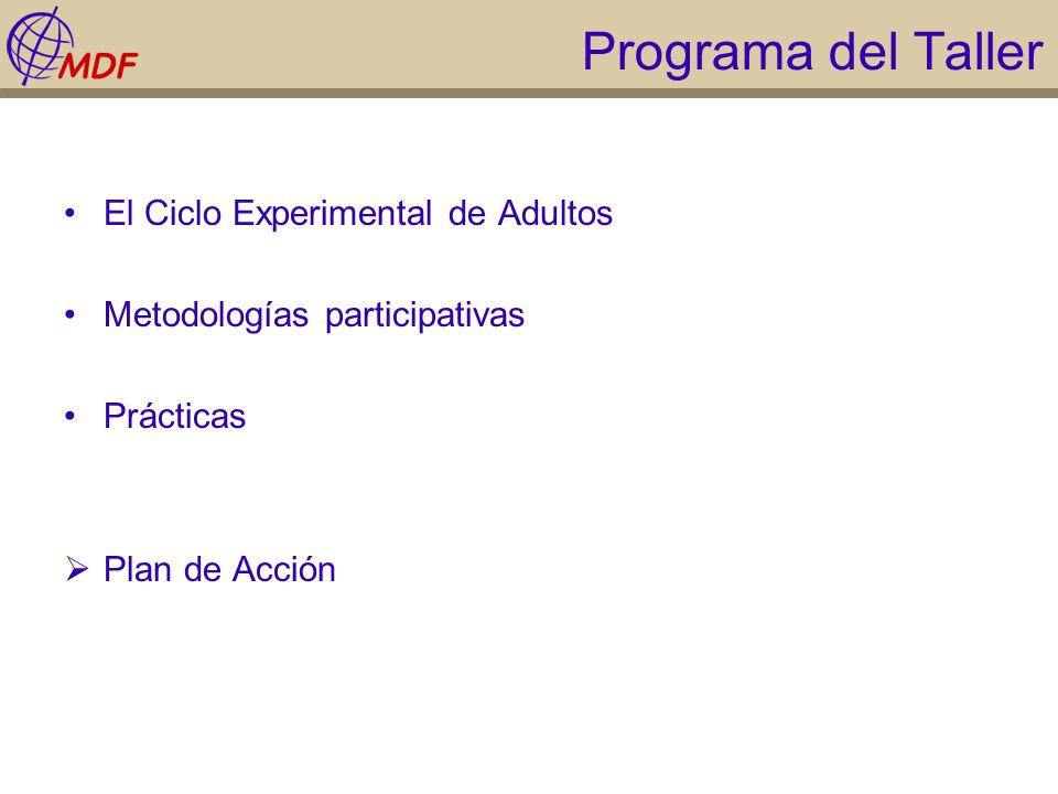 Programa del Taller El Ciclo Experimental de Adultos