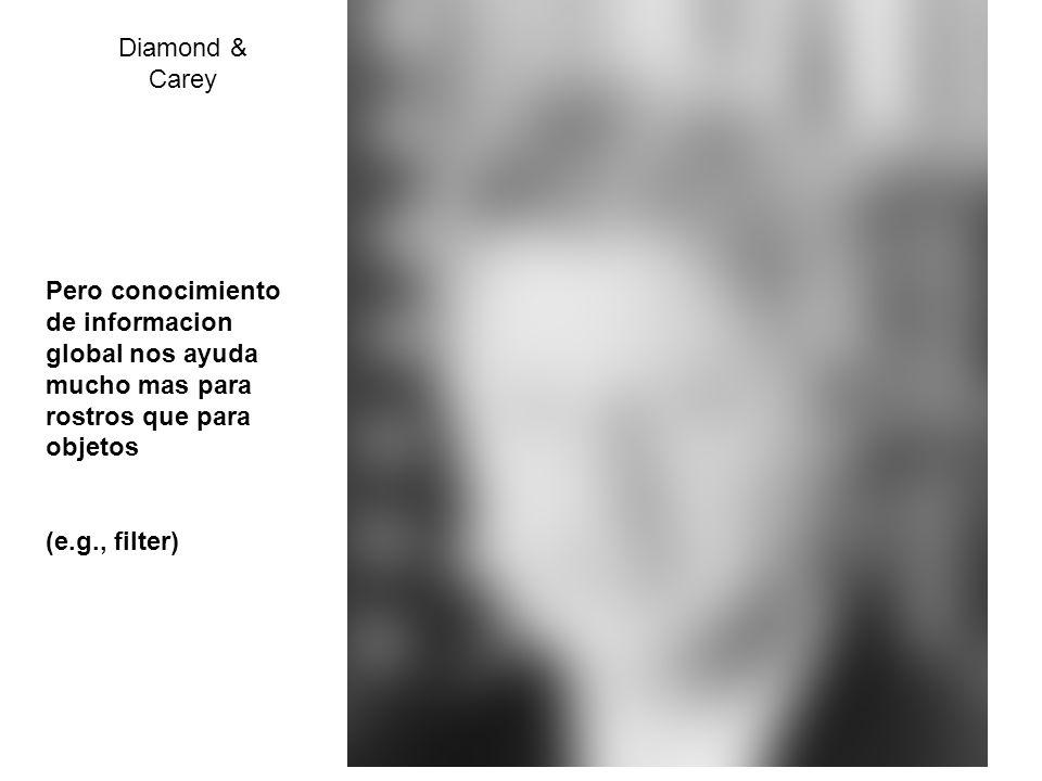Diamond & Carey Pero conocimiento de informacion global nos ayuda mucho mas para rostros que para objetos.