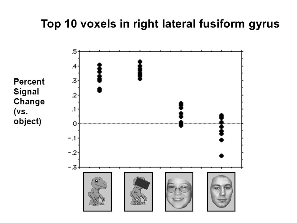 Top 10 voxels in right lateral fusiform gyrus