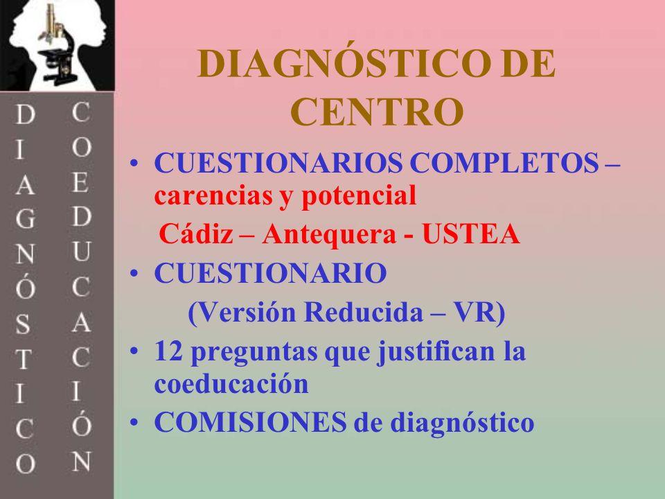 DIAGNÓSTICO DE CENTRO CUESTIONARIOS COMPLETOS – carencias y potencial