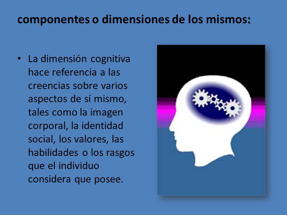 componentes o dimensiones de los mismos: