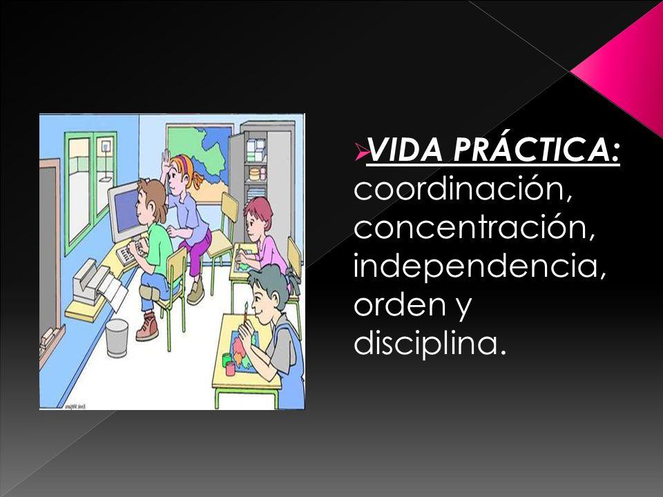 VIDA PRÁCTICA: coordinación, concentración, independencia, orden y disciplina.
