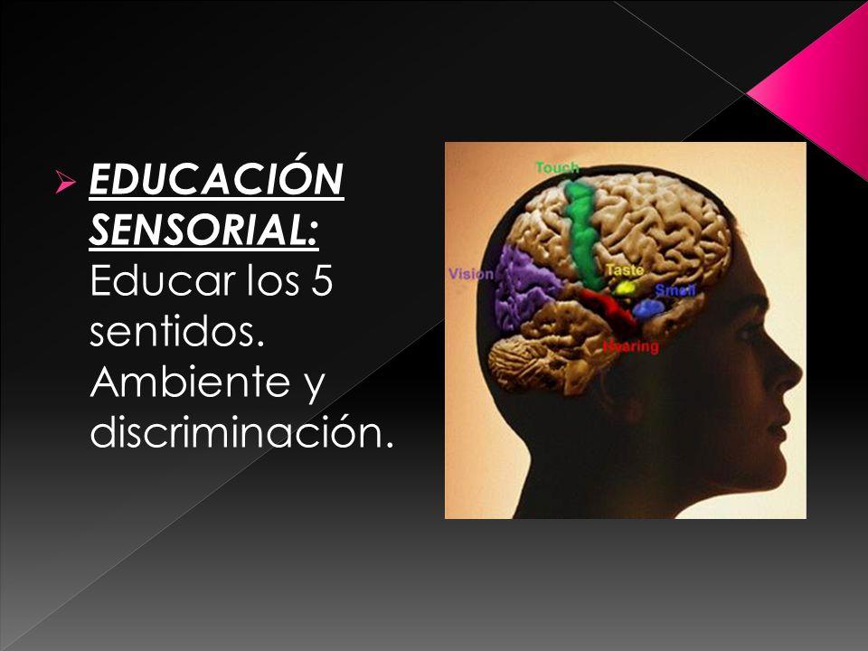 EDUCACIÓN SENSORIAL: Educar los 5 sentidos. Ambiente y discriminación.