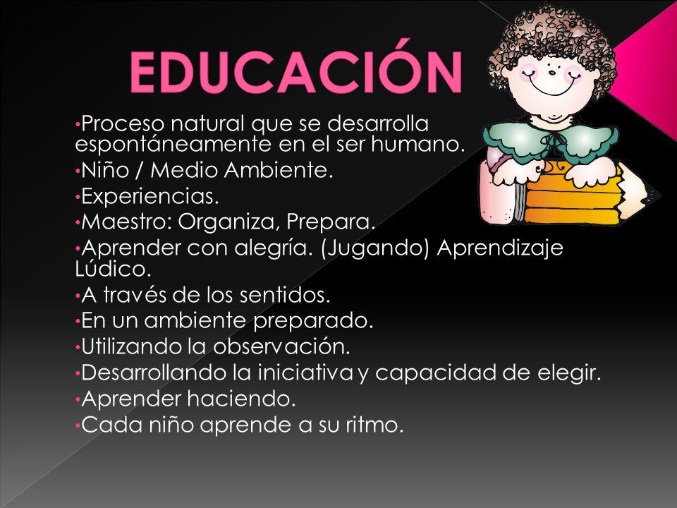 EDUCACIÓN Proceso natural que se desarrolla espontáneamente en el ser humano. Niño / Medio Ambiente.