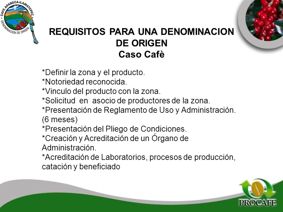 REQUISITOS PARA UNA DENOMINACION DE ORIGEN