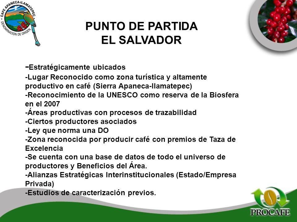 PUNTO DE PARTIDA EL SALVADOR