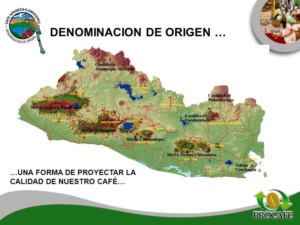 DENOMINACION DE ORIGEN …