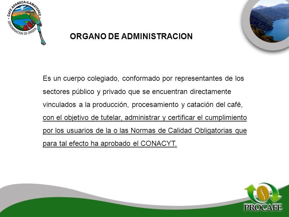 ORGANO DE ADMINISTRACION