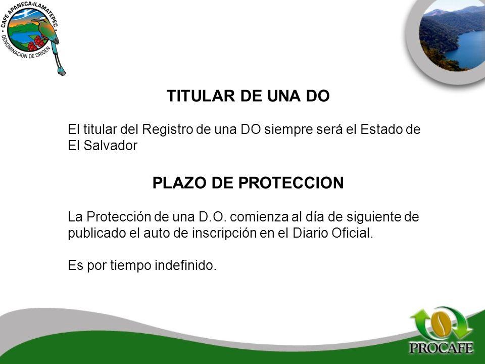 TITULAR DE UNA DO PLAZO DE PROTECCION