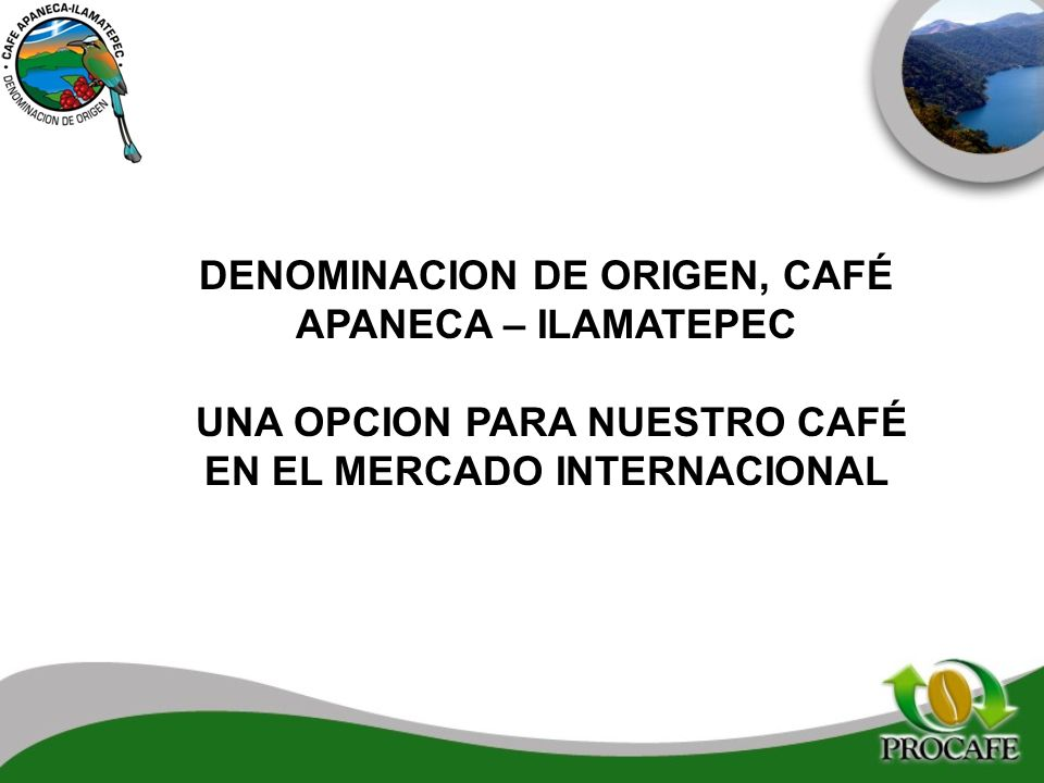 DENOMINACION DE ORIGEN, CAFÉ APANECA – ILAMATEPEC