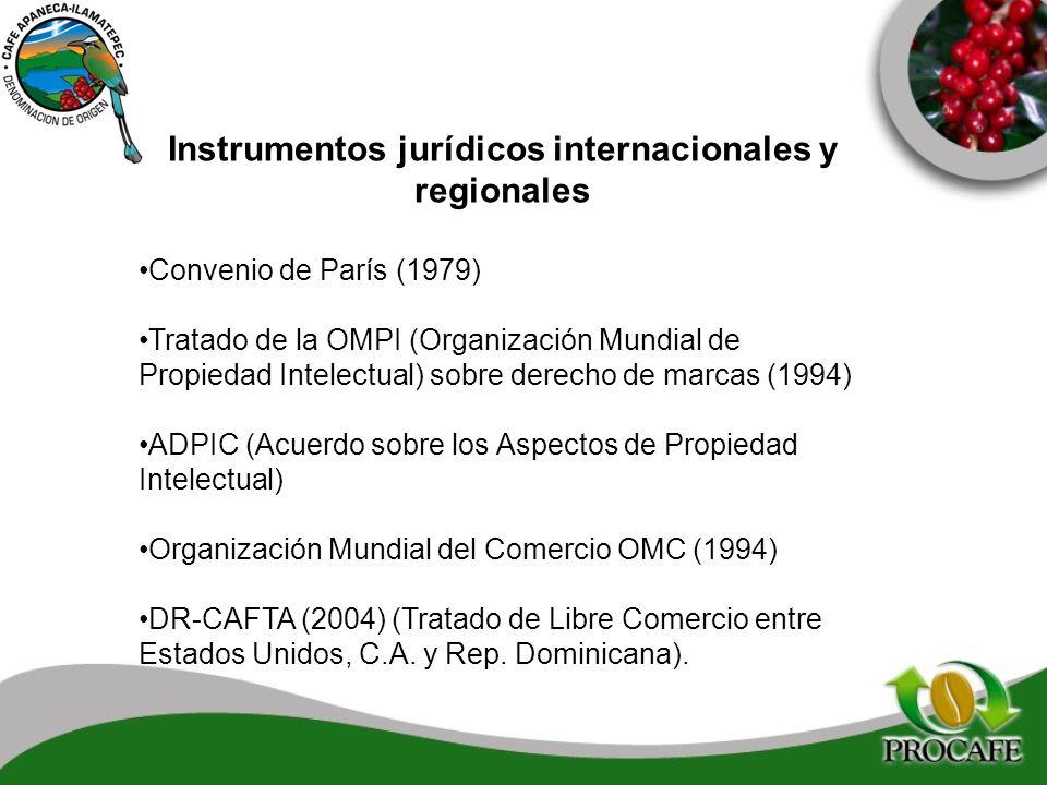 Instrumentos jurídicos internacionales y regionales