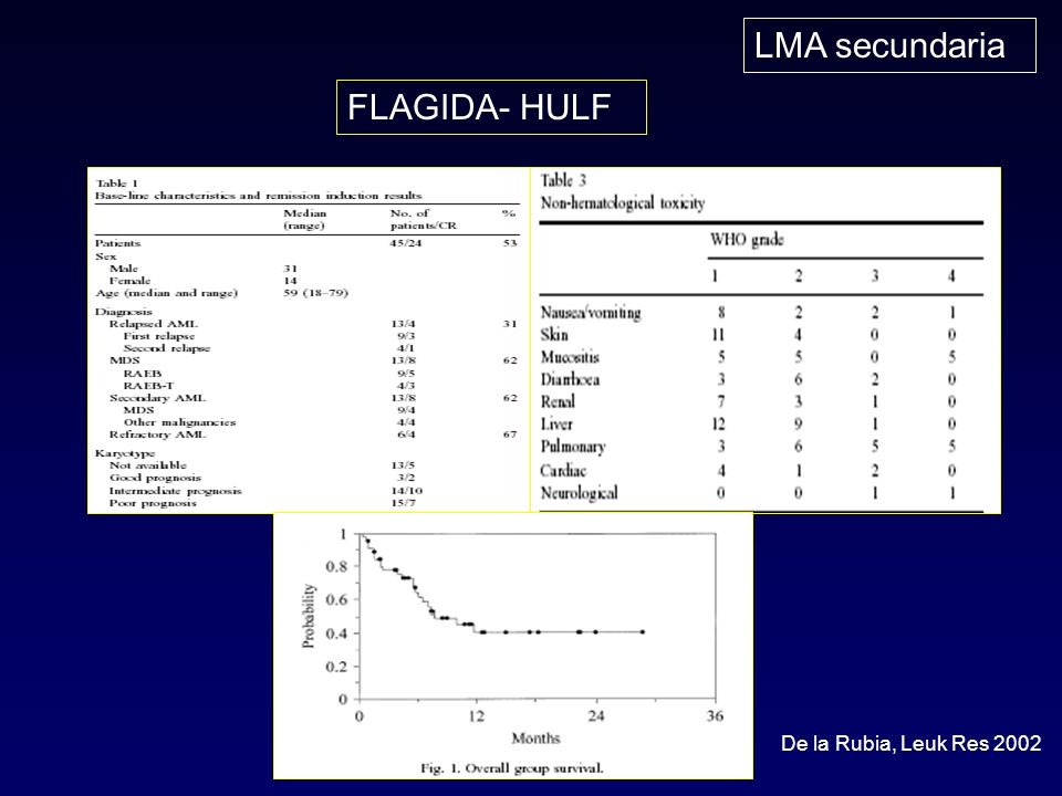 LMA secundaria FLAGIDA- HULF De la Rubia, Leuk Res 2002