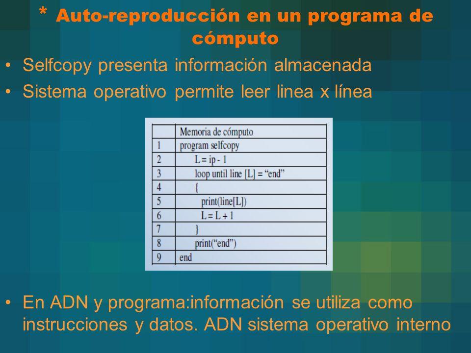 * Auto-reproducción en un programa de cómputo