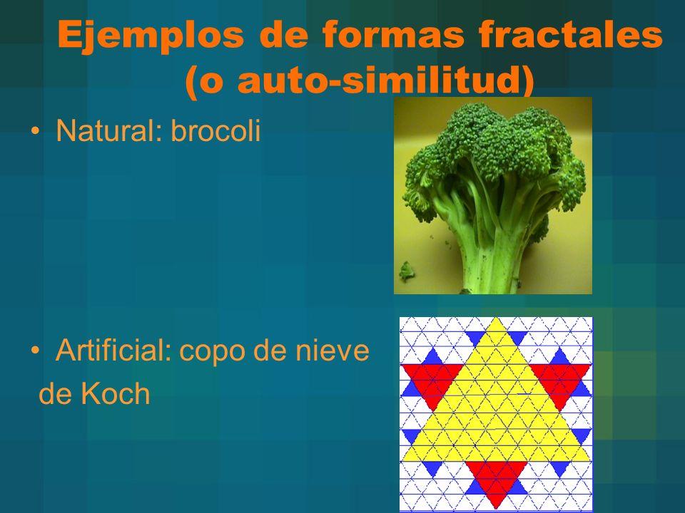 Ejemplos de formas fractales (o auto-similitud)