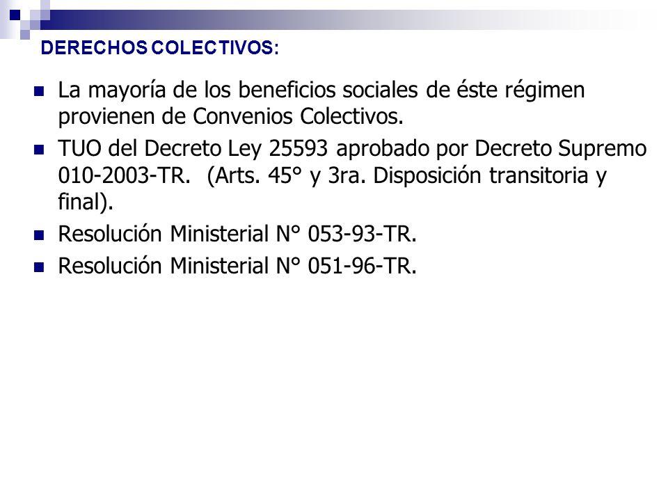 Resolución Ministerial N° 053-93-TR.