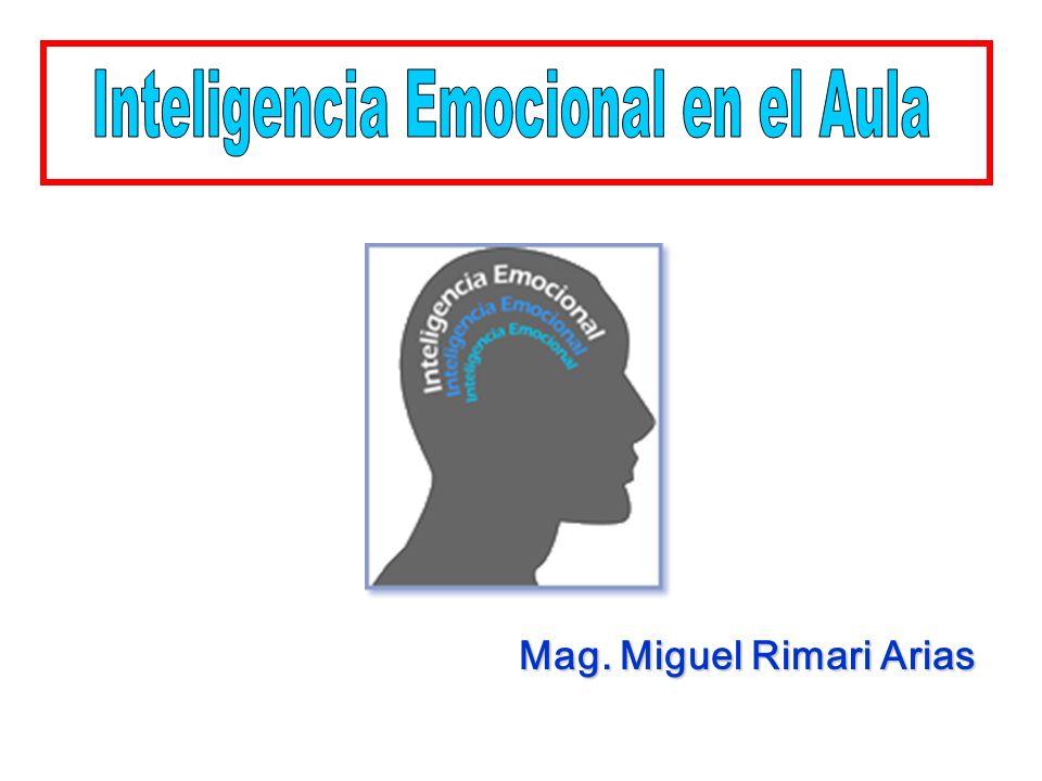 Mag. Miguel Rimari Arias