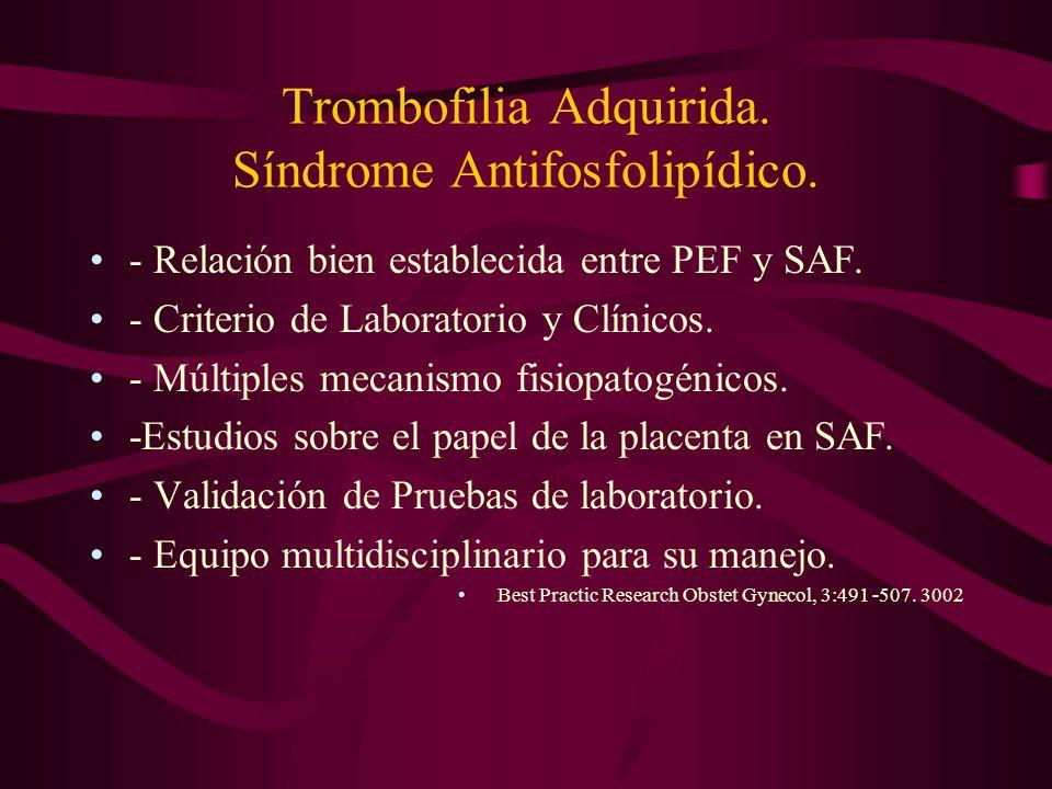 Trombofilia Adquirida. Síndrome Antifosfolipídico.