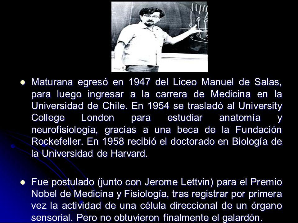 Maturana egresó en 1947 del Liceo Manuel de Salas, para luego ingresar a la carrera de Medicina en la Universidad de Chile. En 1954 se trasladó al University College London para estudiar anatomía y neurofisiología, gracias a una beca de la Fundación Rockefeller. En 1958 recibió el doctorado en Biología de la Universidad de Harvard.