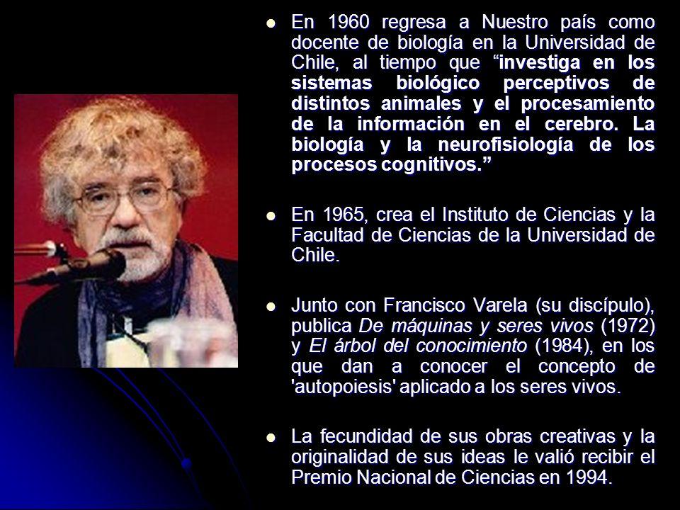 En 1960 regresa a Nuestro país como docente de biología en la Universidad de Chile, al tiempo que investiga en los sistemas biológico perceptivos de distintos animales y el procesamiento de la información en el cerebro. La biología y la neurofisiología de los procesos cognitivos.