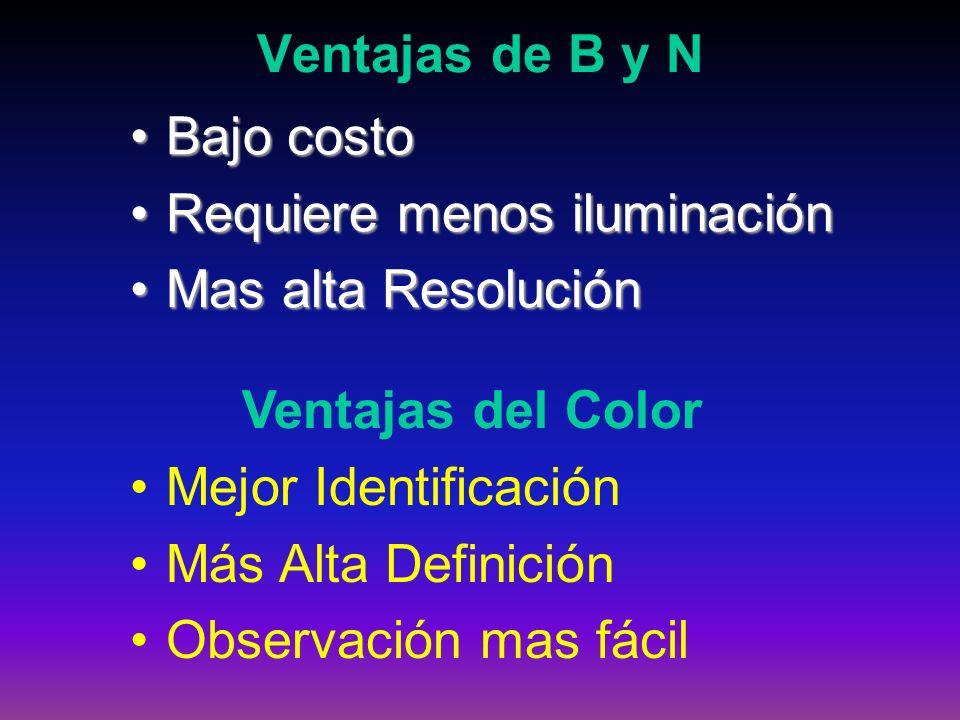 Ventajas de B y N Bajo costo. Requiere menos iluminación. Mas alta Resolución. Ventajas del Color.