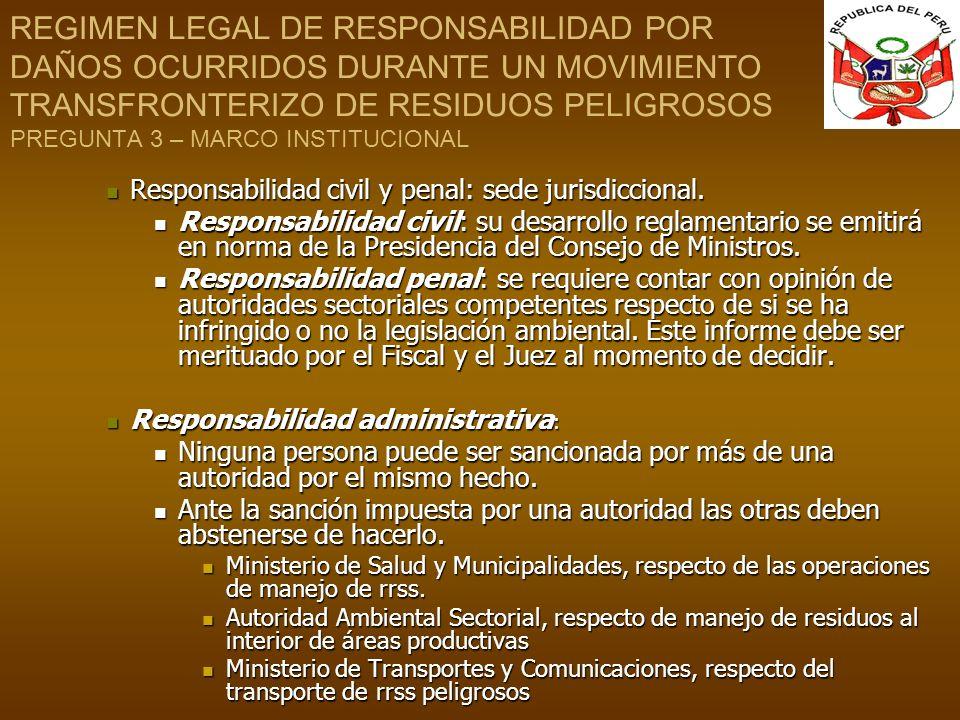 REGIMEN LEGAL DE RESPONSABILIDAD POR DAÑOS OCURRIDOS DURANTE UN MOVIMIENTO TRANSFRONTERIZO DE RESIDUOS PELIGROSOS PREGUNTA 3 – MARCO INSTITUCIONAL