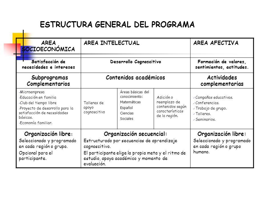 ESTRUCTURA GENERAL DEL PROGRAMA