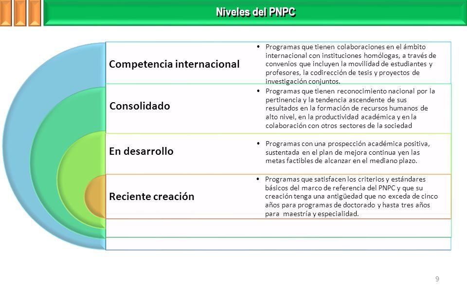 Competencia internacional Consolidado En desarrollo Reciente creación