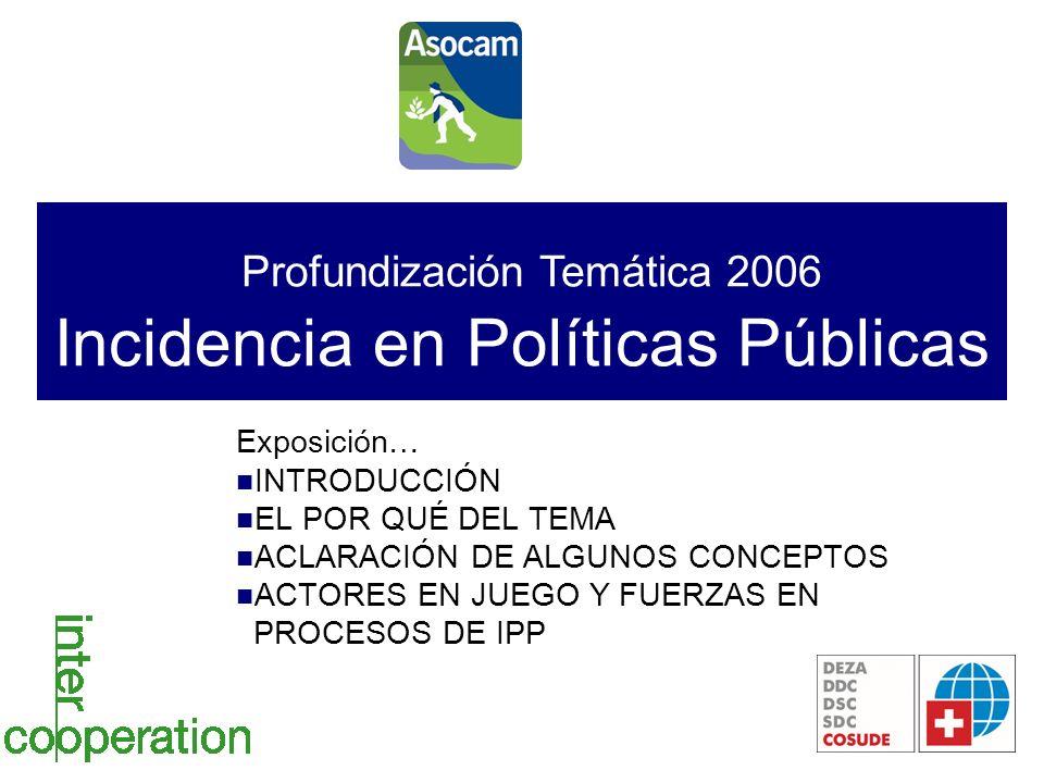 Profundización Temática 2006 Incidencia en Políticas Públicas