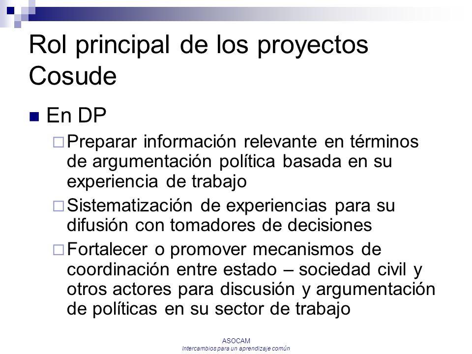 Rol principal de los proyectos Cosude
