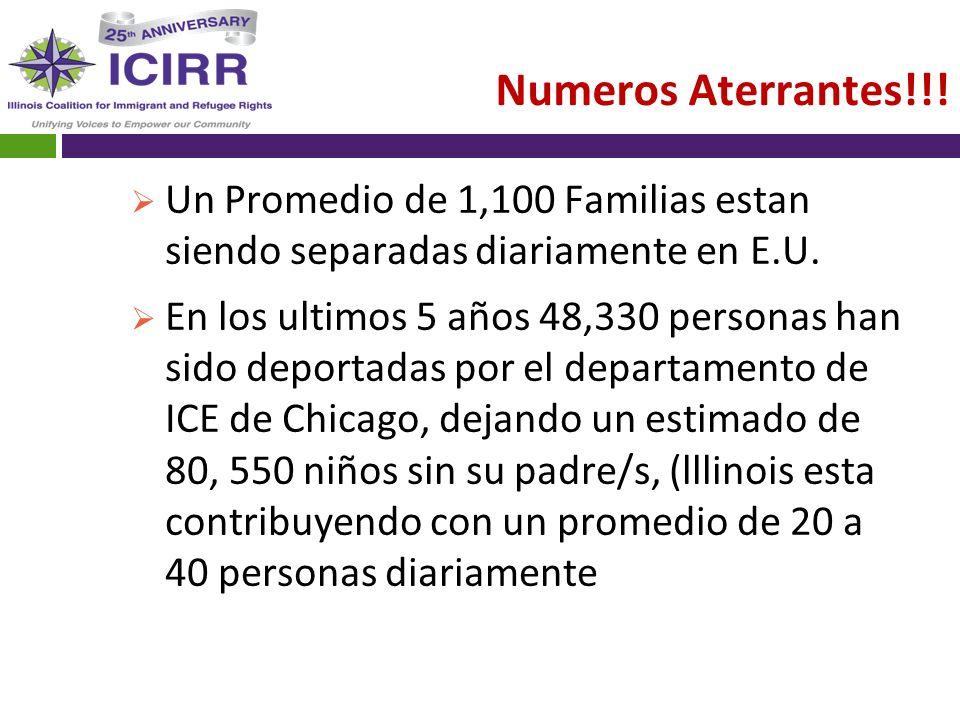 Numeros Aterrantes!!! Un Promedio de 1,100 Familias estan siendo separadas diariamente en E.U.