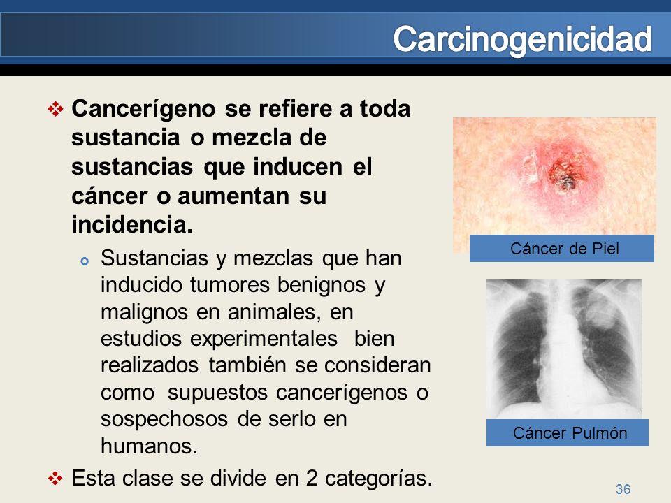 Carcinogenicidad Cancerígeno se refiere a toda sustancia o mezcla de sustancias que inducen el cáncer o aumentan su incidencia.