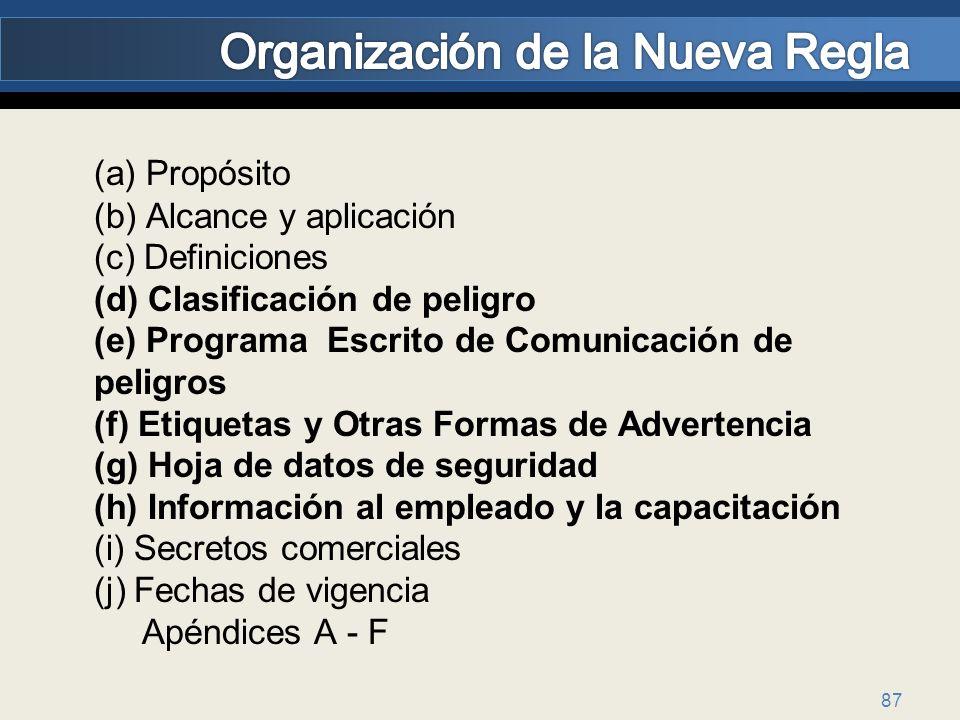 Organización de la Nueva Regla