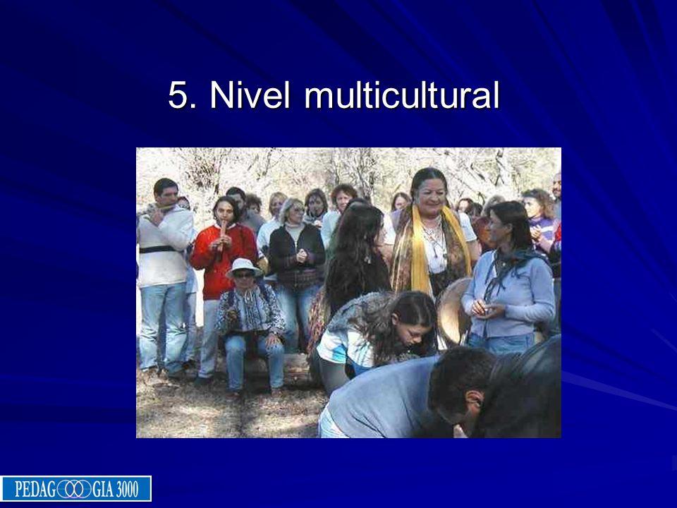 5. Nivel multicultural
