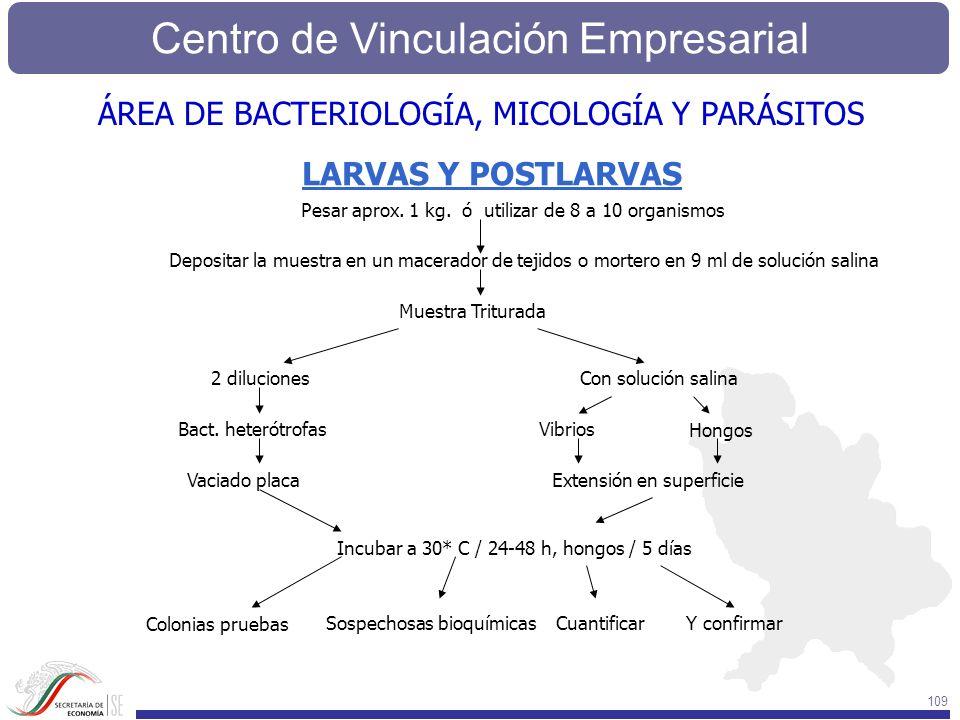 ÁREA DE BACTERIOLOGÍA, MICOLOGÍA Y PARÁSITOS